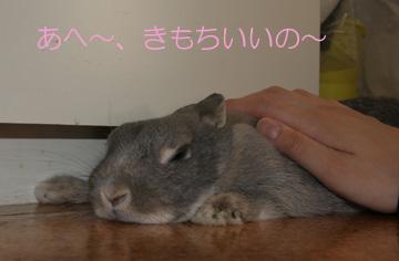 2008-09-07-096.jpg