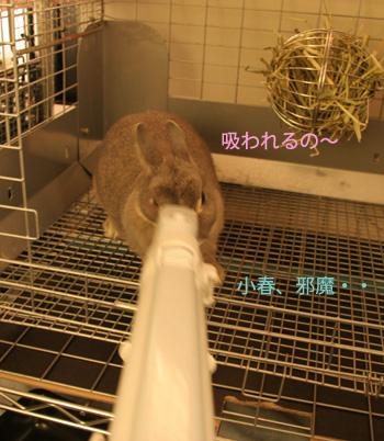 2008-12-07-006.jpg