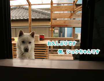 2009-05-06-001.jpg