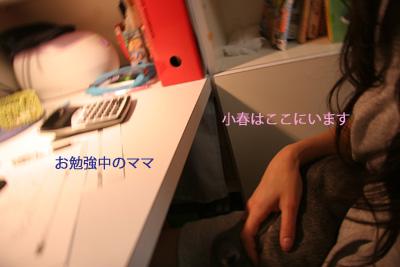 2009-05-08-003.jpg