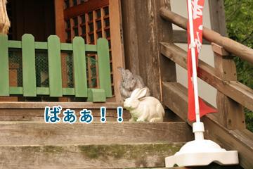 2009-05-31-033.jpg