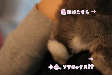 2009-10-01-001.jpg