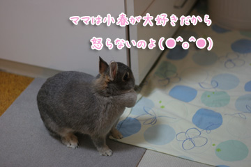 2009-10-08-007.jpg