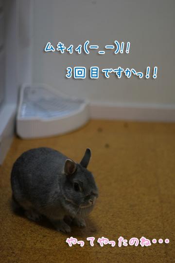 2009-10-08-010.jpg