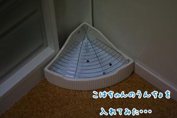 2009-10-08-012.jpg