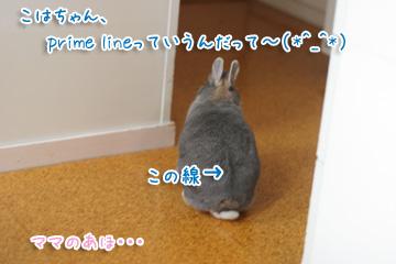 2009-10-08-016.jpg