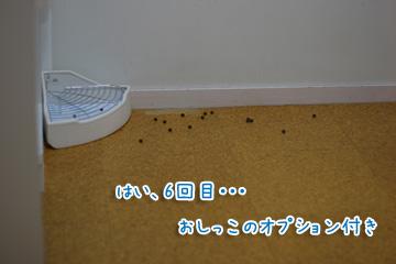 2009-10-08-023.jpg