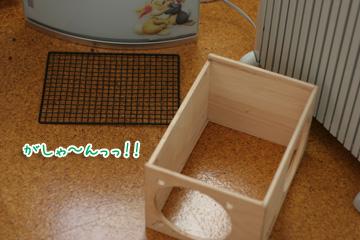 2009-10-12-001.jpg