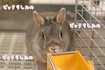 2009-10-12-003.jpg