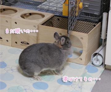 2009-10-12-017.jpg