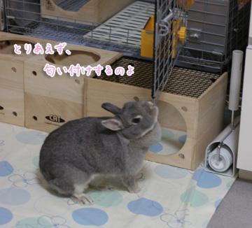 2009-10-12-018.jpg