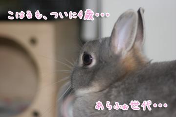 2010-03-12-009.jpg