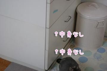 2010-03-30-003.jpg