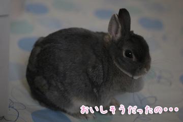 2010-03-30-025.jpg