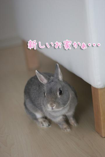2010-04-10-051.jpg