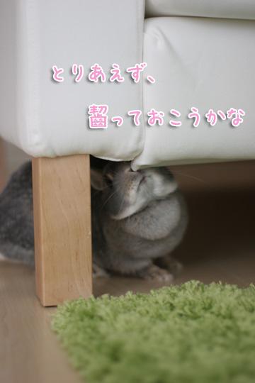 2010-04-10-052.jpg