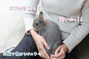 2010-04-10-098.jpg