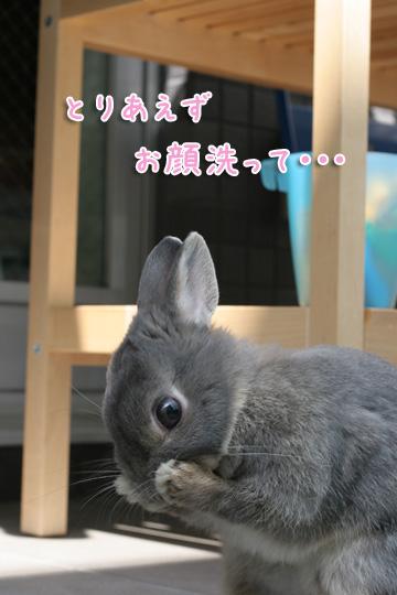 2010-04-10-116.jpg