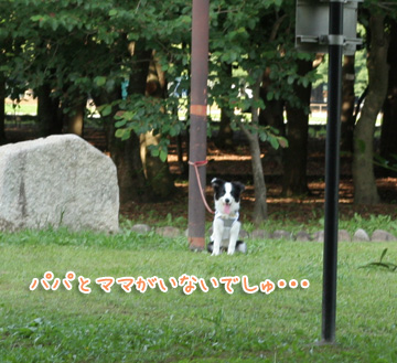 2010-06-24-011.jpg