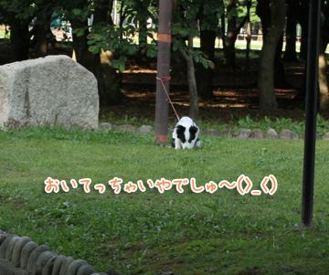 2010-06-24-014.jpg