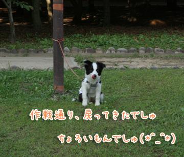 2010-06-24-017.jpg