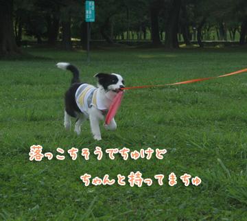 2010-06-24-036.jpg