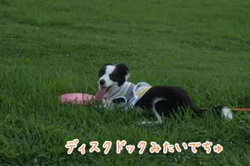 2010-06-24-053.jpg