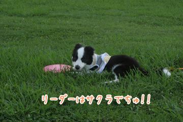 2010-06-24-058.jpg