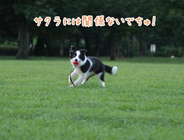 2010-07-10-062.jpg