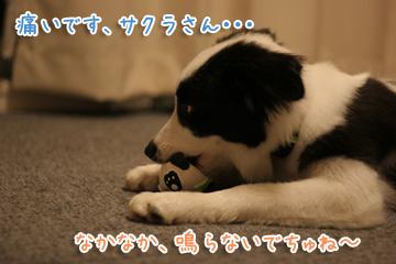 2010-07-12-015.jpg
