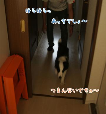 2010-07-20-009.jpg
