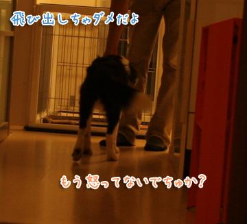 2010-07-27-010.jpg