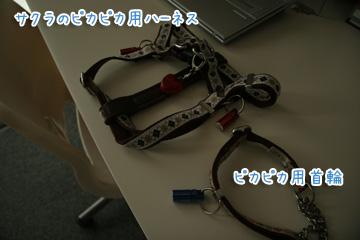 2010-07-28-049.jpg