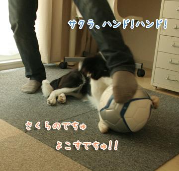 2010-08-01-045.jpg