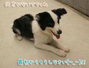 2010-08-08-019.jpg