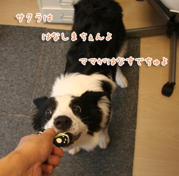 2010-08-19-003.jpg
