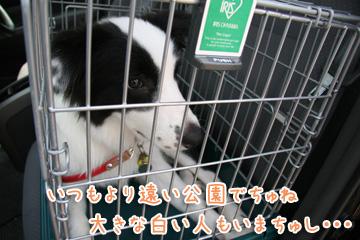 2010-08-22-001.jpg