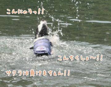 2010-08-22-111.jpg