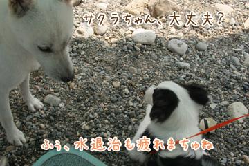 2010-08-22-116.jpg