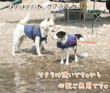 2010-08-22-139.jpg
