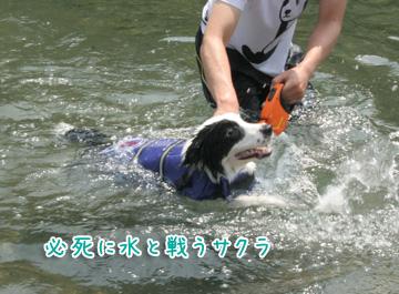 2010-08-22-168.jpg