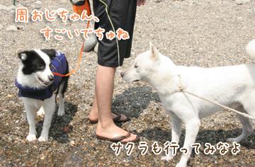 2010-08-22-205.jpg