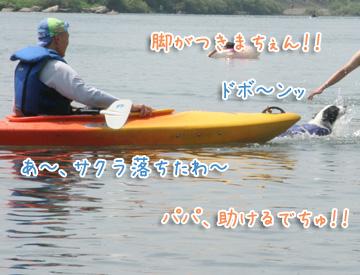 2010-08-22-232.jpg