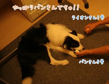 2010-09-07-001.jpg