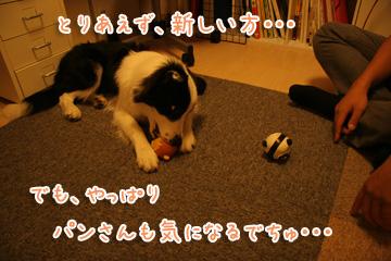 2010-09-07-011.jpg