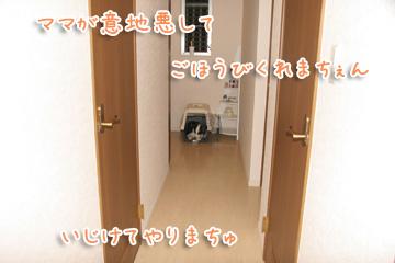 2010-09-09-015.jpg