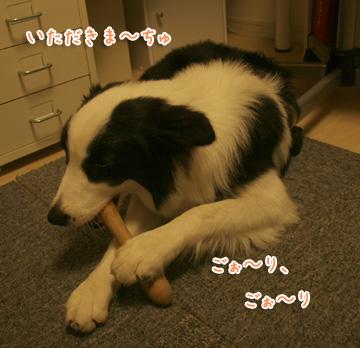 2010-10-03-004.jpg