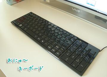 2010-11-29-001.jpg