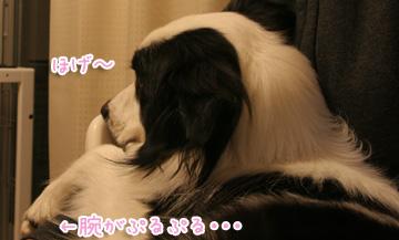 2011-02-16-006.jpg