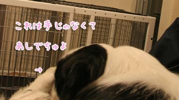 2011-02-22-016.jpg